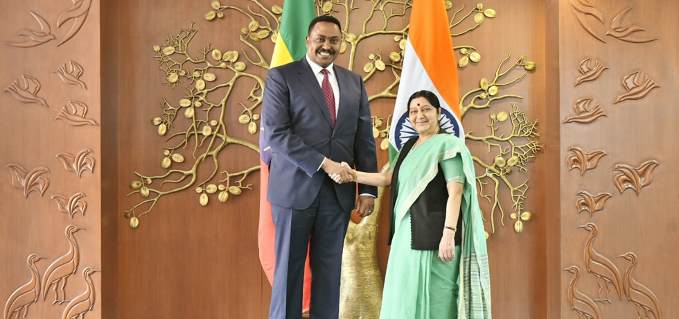 External Affairs Minister meets Dr. Workneh Gebeyehu, Foreign Minister of Ethiopia in New Delhi