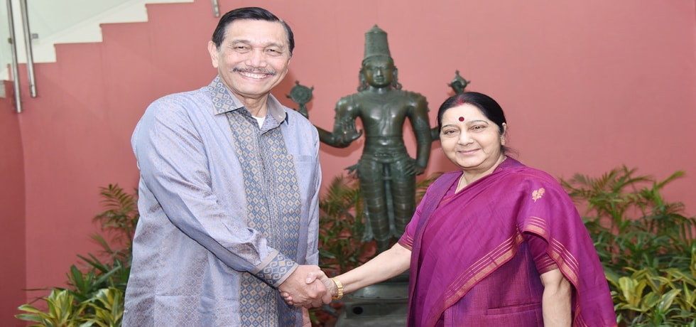 External Affairs Minister meets Gen (Retd.) Luhut Binsar Pandjaitan, Coordinating Minister of Maritime Affairs of Indonesia in New Delhi